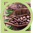 thuốc giảm cân ChocoSlim - cacao