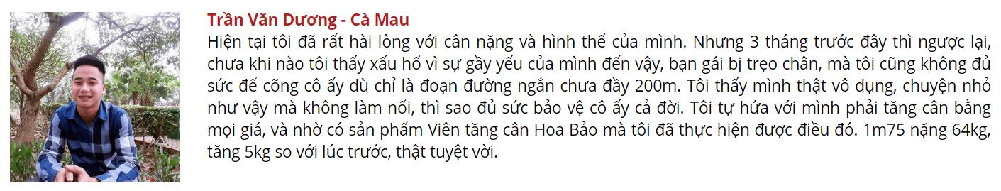 hoa-bao-TRAN-VAN-DUONG